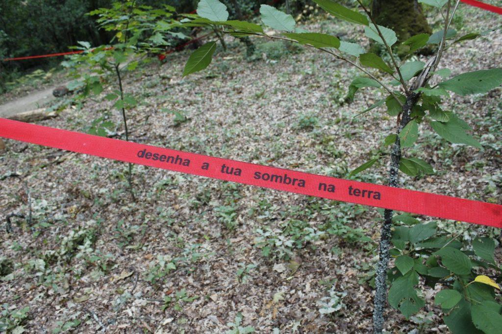 """Pormenor de """"Por favor, segue a Linha Vermelha"""" (Cristina Ataíde, 2018).[Créditos da Imagem: Cristina Ataíde. 2018-10-26][Cedência: Cristina Ataíde. 2019-07-17]"""