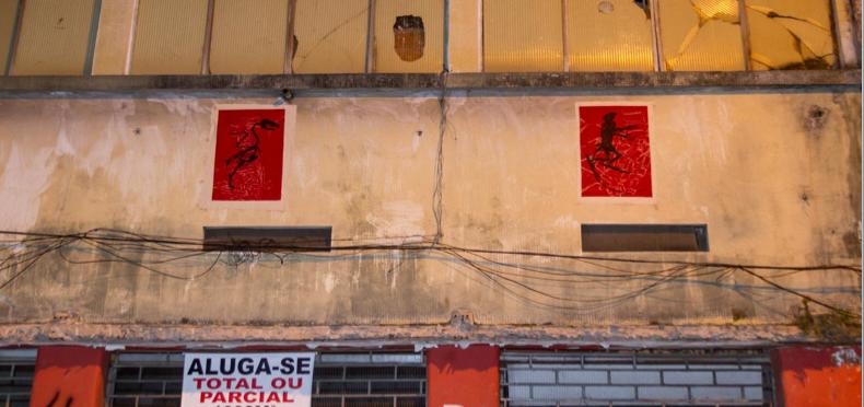 """""""Projecto Mutantes"""" (Mariana Reis, 2013).[Créditos da Imagem: Mariana Reis p/ Arte Pública Capixaba. 2013-10.]"""